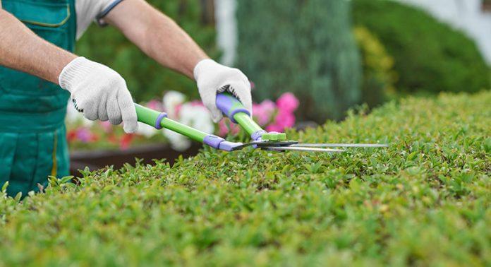 Oprema za vrt in okolico